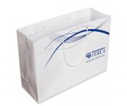 Бумажный пакет 250х350х120